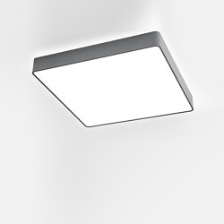 Caleo-Y2/X2 | Ceiling lights | Lightnet