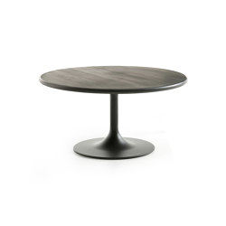 Clarion Low | Coffee tables | Artifort