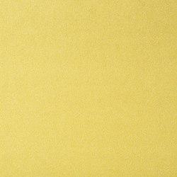 Shabby Velvet 22 | Upholstery fabrics | Flukso