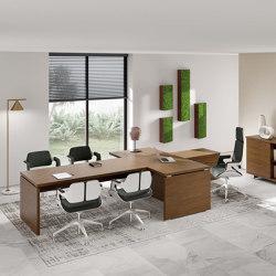 Odeon desk | Desks | ALEA