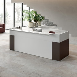 Philo reception | Counters | ALEA