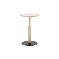 Woodwork WW360-h90 | Standing tables | Karl Andersson & Söner