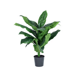Peace Lily | Artificial plants | Götessons