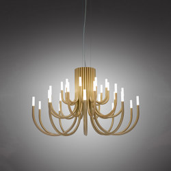 The Palm | Suspensions | ALMA LIGHT
