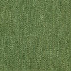 Buonfresco col.12 kiwi   Dekorstoffe   Dedar