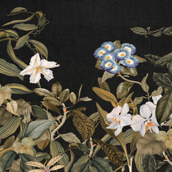 Atelier 47| Papel Pintado DD118080 Botanicsketch3 | Revestimientos de paredes / papeles pintados | Architects Paper