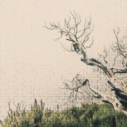 Atelier 47 | Wallpaper DD116895 Deathtree2 | Wall coverings / wallpapers | Architects Paper