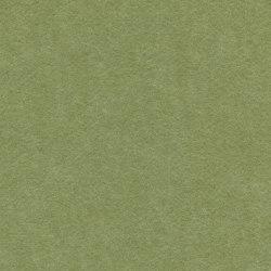 EchoPanel® 12mm Plain 579 | Systèmes muraux absorption acoustique | Woven Image