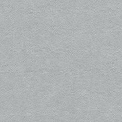 EchoPanel® 24mm Plain 101 | Systèmes muraux absorption acoustique | Woven Image