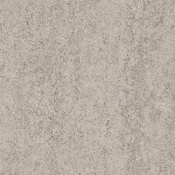 Signature Stones - 1,0 mm | Basilica Shell | Synthetic panels | Amtico