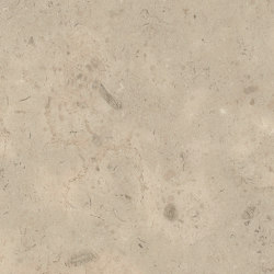 Signature Stones - 1,0 mm | Fossil Limestone | Synthetic panels | Amtico