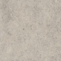 Signature Stones - 1,0 mm | Stria Ash | Synthetic panels | Amtico