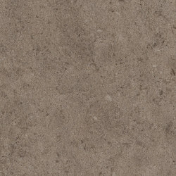 Signature Stones - 1,0 mm | Stria Basalt | Synthetic panels | Amtico