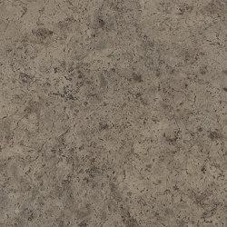 Signature Stones - 1,0 mm | Buckland Stone | Synthetic panels | Amtico