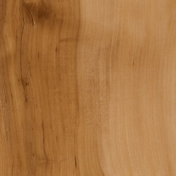 Signature Woods - 1,0 mm | Applewood | Synthetic panels | Amtico