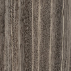 Signature Woods - 1,0 mm | Shibori Sencha | Synthetic panels | Amtico