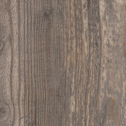 Signature Woods - 1,0 mm | Harbour Pine | Synthetic panels | Amtico
