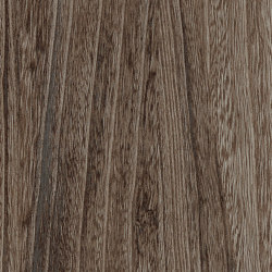 Signature Woods - 1,0 mm | Quill Sable | Synthetic panels | Amtico