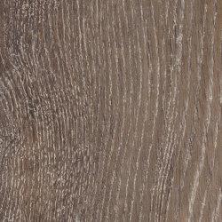 Signature Woods - 1,0 mm | Pilgrim Oak | Synthetic panels | Amtico