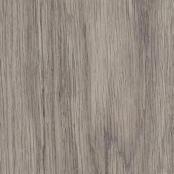 Signature Woods - 1,0 mm | Shore Oak | Lastre plastica | Amtico