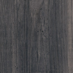 Signature Woods - 1,0 mm | Lunar Pine | Synthetic panels | Amtico