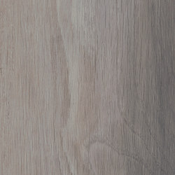 Signature Woods - 1,0 mm | Tranquil Grain | Synthetic panels | Amtico