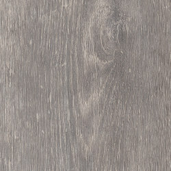Signature Woods - 1,0 mm | Alpine Oak | Lastre plastica | Amtico