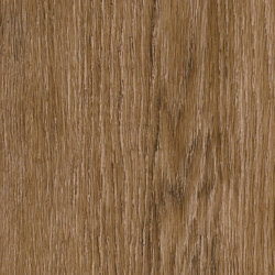 Signature Woods - 1,0 mm | Bordeaux Oak | Synthetic panels | Amtico