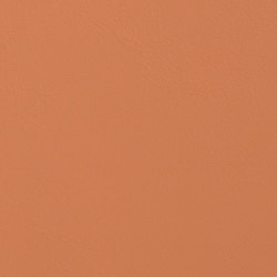 Allante | Butterscotch | Faux leather | Morbern Europe