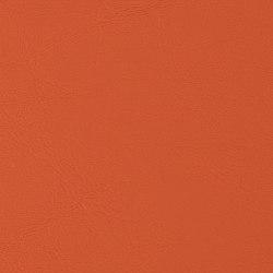 Allante | Mango | Faux leather | Morbern Europe