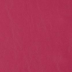 Allante | Wine | Cuero artificial | Morbern Europe