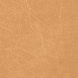 Carrara  | Gold | Faux leather | Morbern Europe