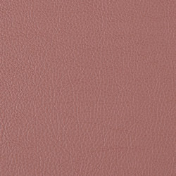 Prodigy | Equestrian | Faux leather | Morbern Europe