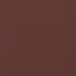 Prodigy | Java | Cuero artificial | Morbern Europe