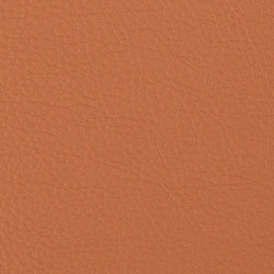 Prodigy | Ochre | Faux leather | Morbern Europe
