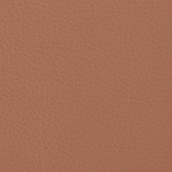 Prodigy | Paprika | Faux leather | Morbern Europe