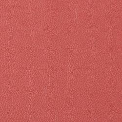 Prodigy | Serrano | Faux leather | Morbern Europe