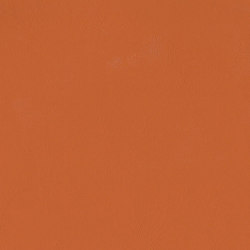 Touch | Burnt Orange | Faux leather | Morbern Europe