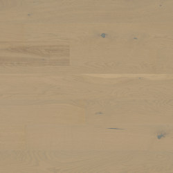 Casapark Oak Avena 15 | Wood flooring | Bauwerk Parkett