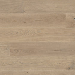 Casapark Oak Sasso 14 | Wood flooring | Bauwerk Parkett