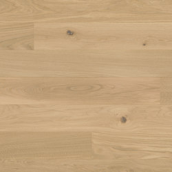 Studiopark Oak Crema 15 | Wood flooring | Bauwerk Parkett