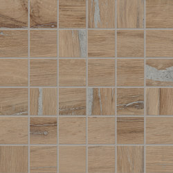 Alter Mosaico 5x5 Noce | Ceramic mosaics | EMILGROUP