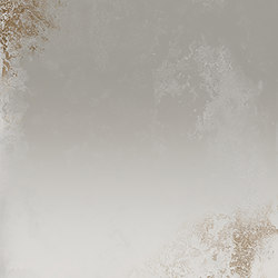 Narciso Argento | Planchas de cerámica | EMILGROUP