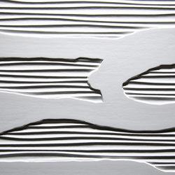 Python Lacquerable Foil | Wood veneers | VD Werkstätten
