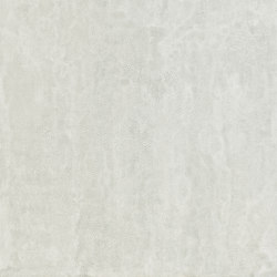 Pelle Grey | Ceramic tiles | Apavisa
