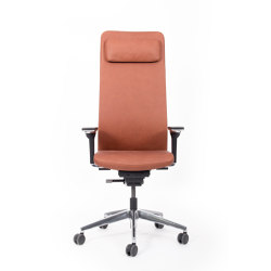 agilis matrix | Office chair | high with headrest | Sillas de oficina | lento