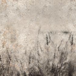 Soft | Wall coverings / wallpapers | WallyArt