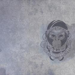 Space Monkey | Revestimientos de paredes / papeles pintados | WallyArt