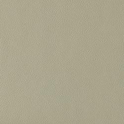 Ambience | Eucalyptus | Faux leather | Morbern Europe