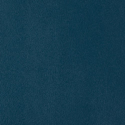 Ambience | Legoin Blue | Faux leather | Morbern Europe